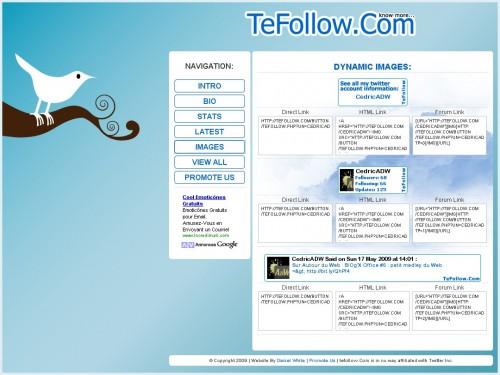 tefollow-1