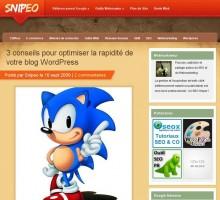 Conseils optimiser WordPress