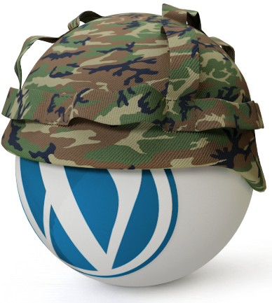 Wordpress securite Wordpress prend l'eau… C'est la panique à bord !