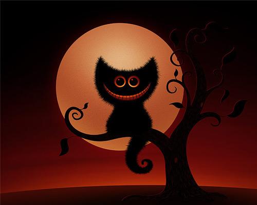 Cheshire-Kitten