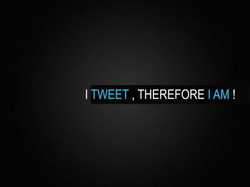 Fond ecran wallpaper Twitter (14)