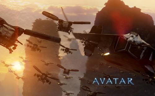 Avatar (16)