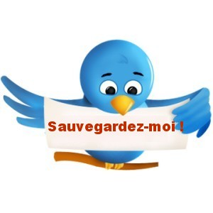 sauvegarde twitter 3 outils pour créer des sauvegardes de votre Twitter