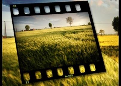 image gratuite 41 sites pour trouver des photos libres de droits