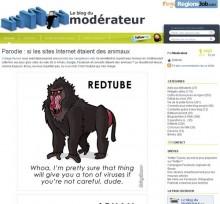 parodie internet animaux