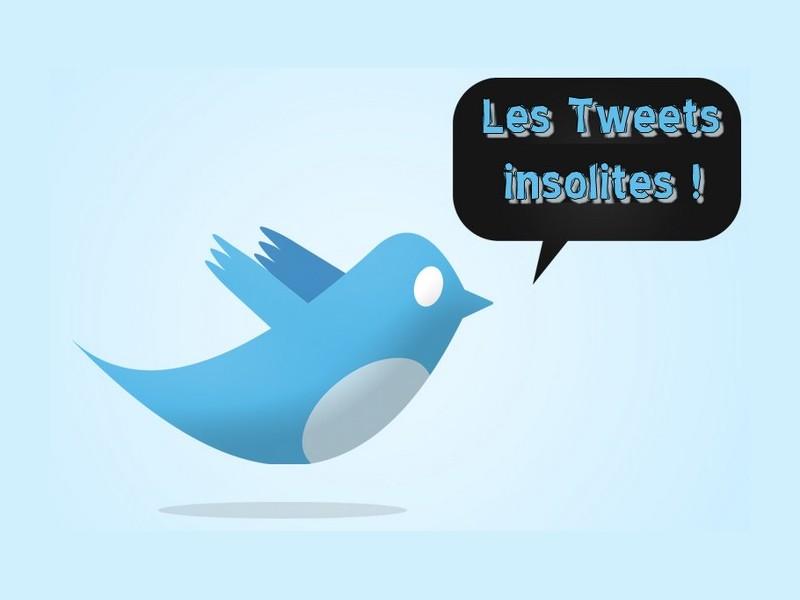 tweets-insolites