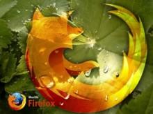 Firefox (24)
