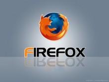 Firefox (29)