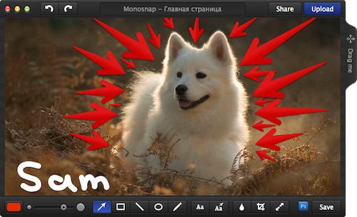 10 outils pour faire une capture d'écran en image ou en vidéo